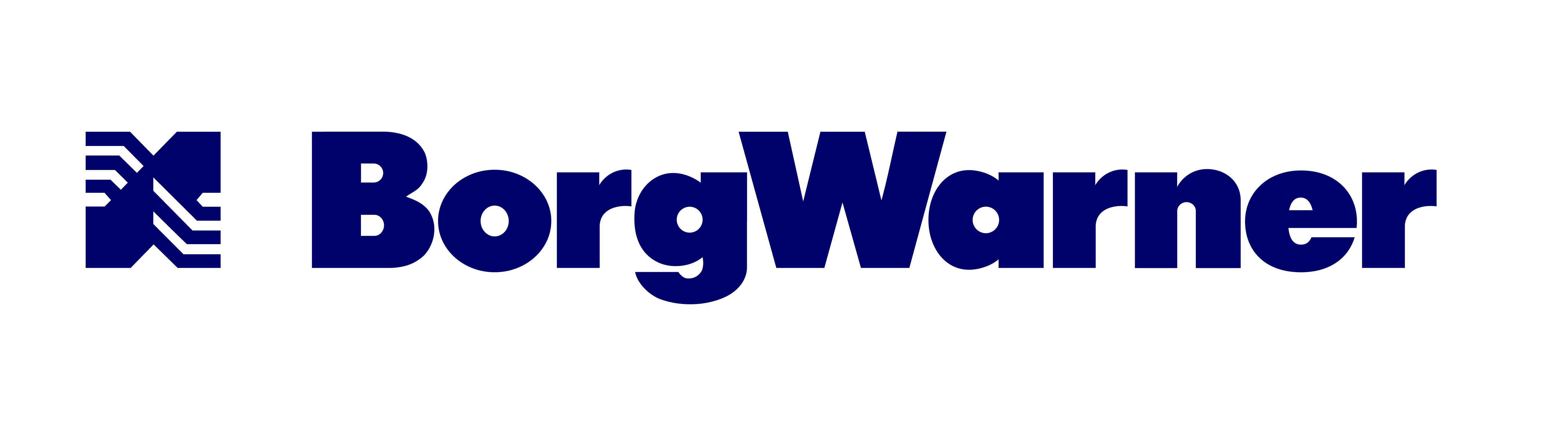 BorgWarner Emissions Systems portugal